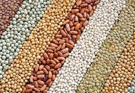 How well do you know beans?